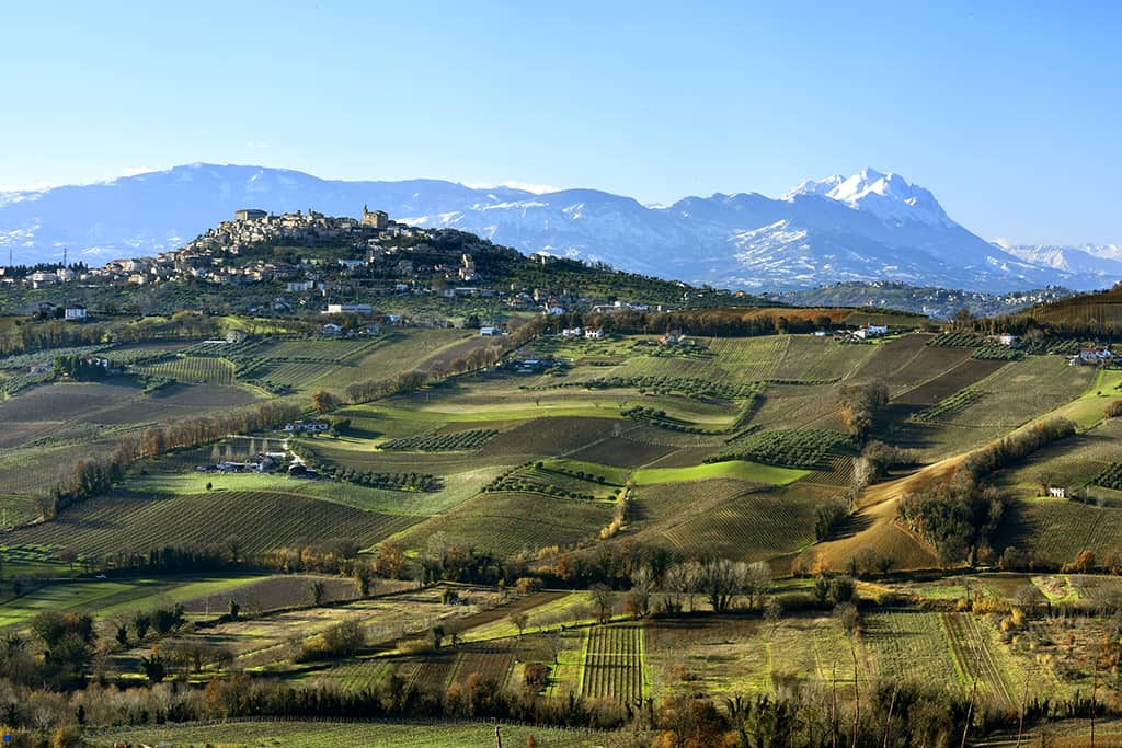 Landscape (Consorzio Tutela Vini d'Abruzzo)