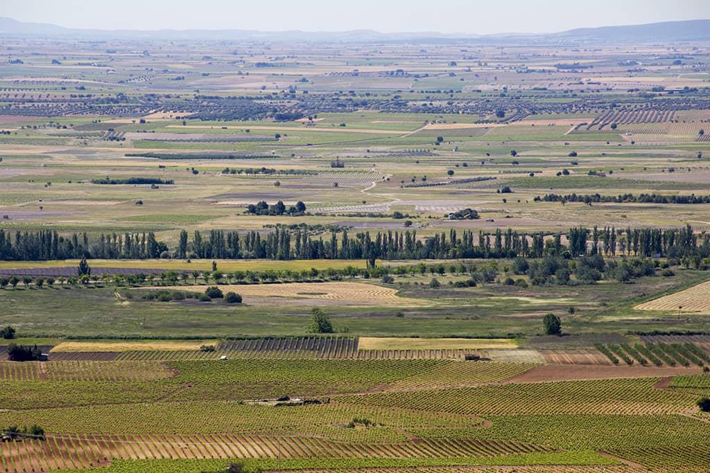 Landscape (DO La Mancha)
